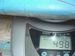 weight31